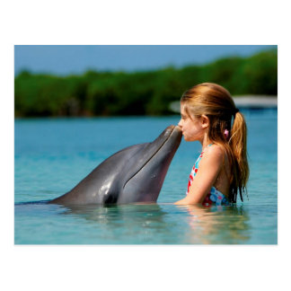 Dolphin's kiss postkarte