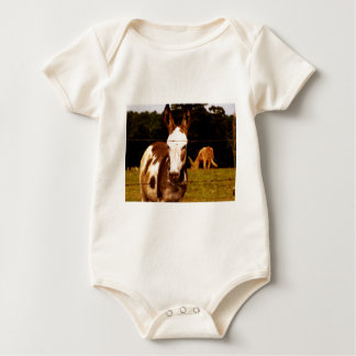 donkey-52295_1920.jpg baby strampler