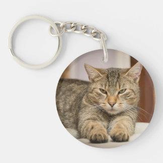 Doppeltes versah Katzen-Foto-Schlüsselkette mit Schlüsselanhänger