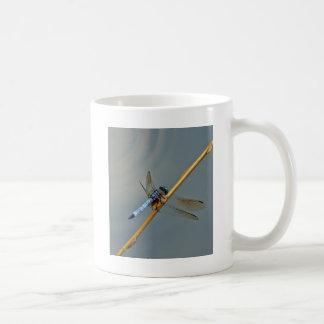Drache-Fliege Kaffeetasse
