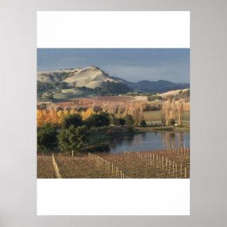 Drachen-Hügel und vineyard-2 Poster
