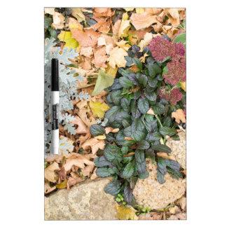 Draufsicht des Herbst Flowerbed Memoboard