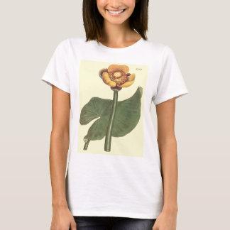 Drei farbige Wasser-Lilien-botanische Illustration T-Shirt