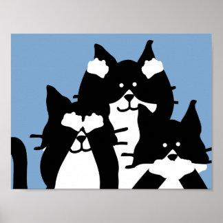Drei kluges Kätzchen in einer Gruppe Poster