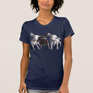 Drei lustige unverschämte Schafe T-Shirt