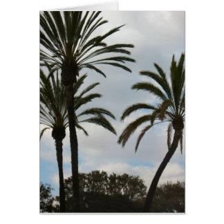 Drei Palmen Karte