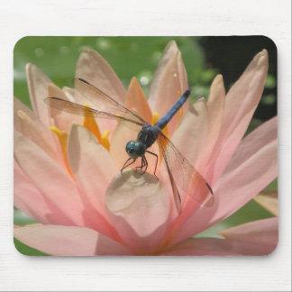 Drgonfly auf Wasser-Lilie Mauspad