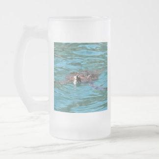Dummkopf-Meeresschildkröte Mattglas Bierglas