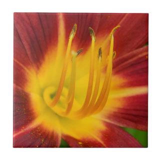 Dunkelrotes Lilien-BlumenmakroFoto Keramikfliese