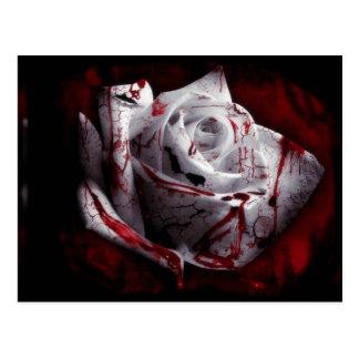 Dunkle Rose Postkarte