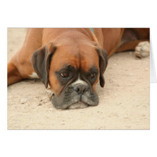 Durchdachtes Jolie Boxer-Hundedenken Grußkarte