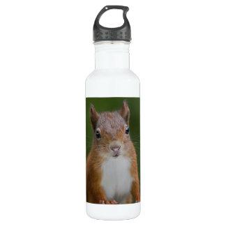 Durstiges Eichhörnchen Trinkflasche