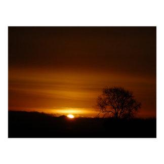 Eden-Sonnenaufgang 1 Postkarte