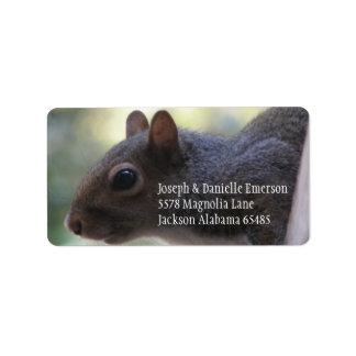 Eichhörnchen-Adressen-Aufkleber Adressaufkleber