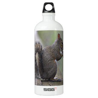 Eichhörnchen (grau) aluminiumwasserflasche