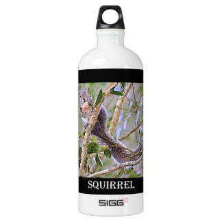 Eichhörnchen-Grau (Kentucky und North Carolina) Aluminiumwasserflasche