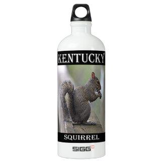 Eichhörnchen (grau) wasserflasche