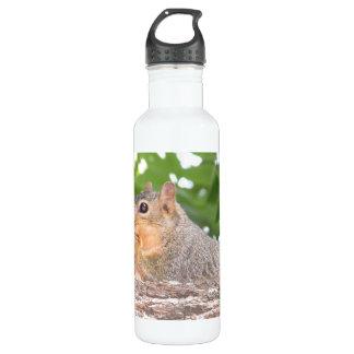 Eichhörnchen-Wasser-Flasche Trinkflasche