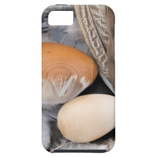 Eier u. Federn iPhone 5 Cover