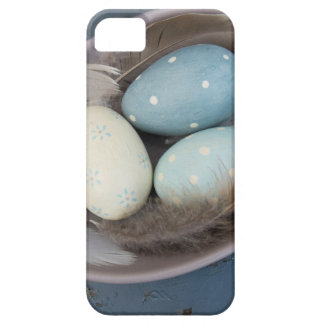 Eier und Federn iPhone 5 Cover