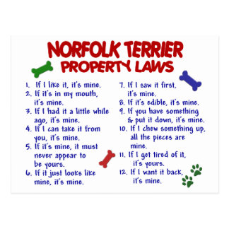 Eigentums-Gesetze 2 NORFOLKS TERRIER Postkarte