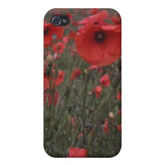 Ein Feld der klaren roten Mohnblumen-Blumen Hülle Fürs iPhone 4