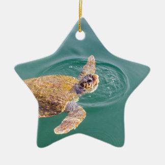 Ein großer Schwimmen-Meeresschildkröte Caretta Keramik Ornament