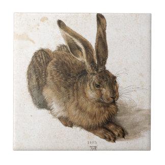 Ein junger Hase durch Albrecht Durer Keramikfliese