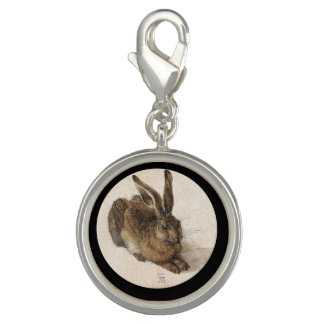 Ein junger Hase Foto Charms