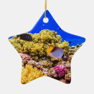 Ein Korallenriff im Roten Meer nahe Ägypten Keramik Stern-Ornament