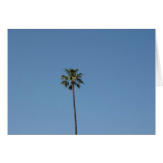 ein palmtree karte