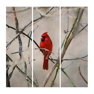 Ein roter Kardinals-Vogel auf einer Niederlassung Triptychon