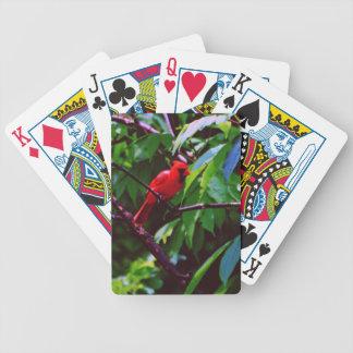 Ein roter Vogel sitzt auf einem Posten Pokerkarten