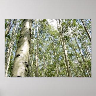 Ein schöner Tag im Waldplakat Poster