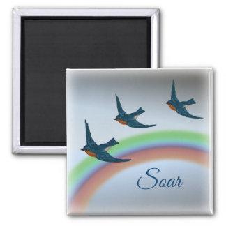 Ein Trio der Drosseln mit einem Regenbogen im Quadratischer Magnet