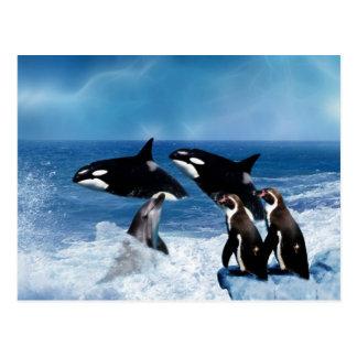 Ein Wal einer Welt Postkarte