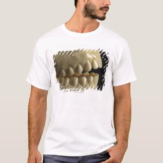 Ein zahnmedizinisches Modell T-Shirt