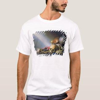 Eine Allegorie der Eitelkeiten des Menschenlebens T-Shirt
