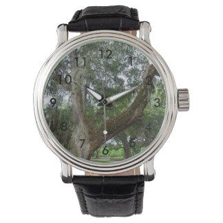 Eine alte Eiche Uhr