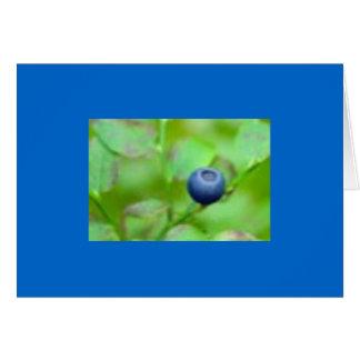 Eine Blaubeere Karte