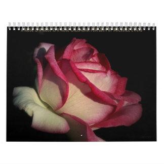 eine Rose ist eine Rose ist ein Rosenkalender für Wandkalender