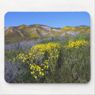 Einfaches nationales Monument Carrizo Mousepad