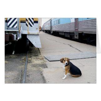 Einsamer Beagle wartete einen Zug - Gruß-Karte Karte