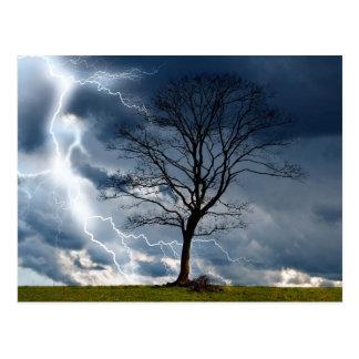 Einziger Baum und Blitz Postkarte