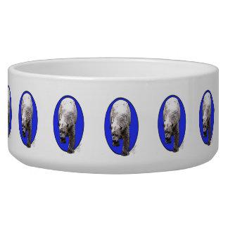 Eisbär-Haustier-Wasser-Schüssel Napf