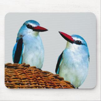 Eisvogel-Vögel Südafrika Mauspads