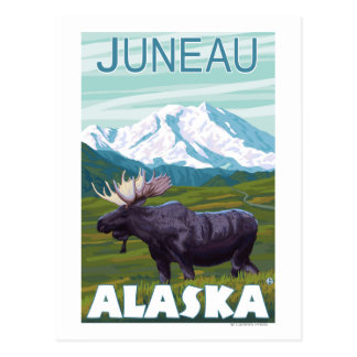 Elch-Szene - Juneau, Alaska Postkarte