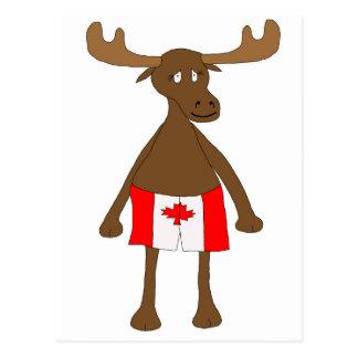 Elche, die kanadische Boxer tragen Postkarten