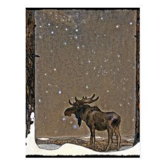 Elche im Schnee Postkarte