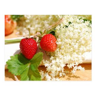 Elderflower und Erdbeere Postkarte